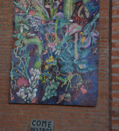 Art Installations at Edition 3